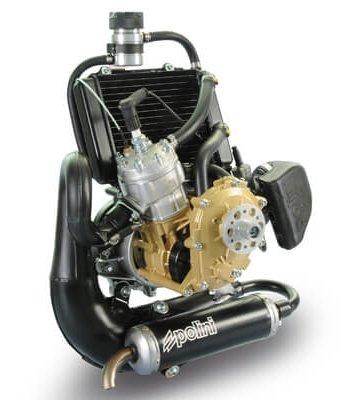 Polini Thor 250 Dual Spark Engine Glidersports